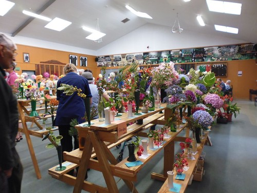 Rongotea Horticultural Society Spring Show