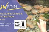 FUNedin - Touch Tank Cruise