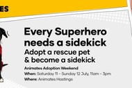 Pet Adoption Weekend: CANCELLED