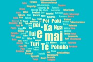 Winton Learn Te Reo Maori