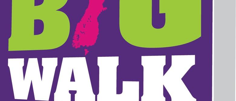 The Big Walk 2011