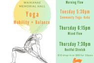 Yoga Mobility and Balance