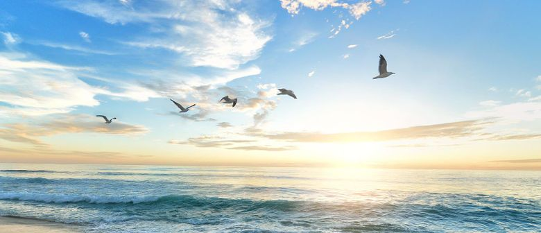 Spiritual Seminar: The Awakening of Universal Love