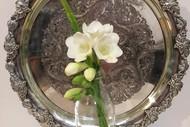 Scargill Spring Flower Show