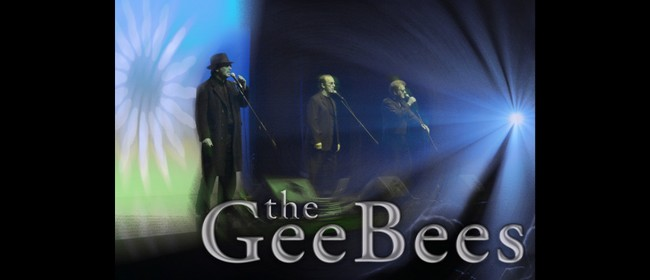 Gee Bees - BeeGees Tribute Group
