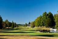 NZ Golf 9-Hole Masters