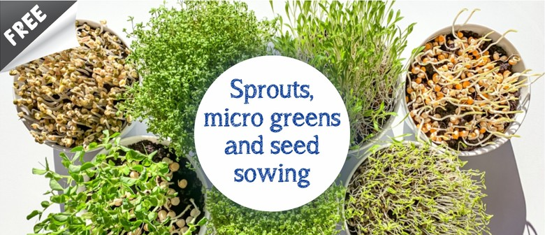 Sprouts, Microgreens and Seed Sowing