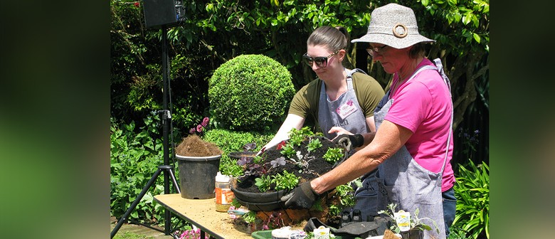 Propagating Plants from Your Garden