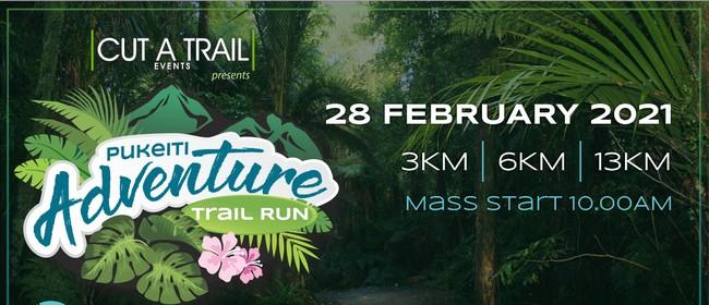 Pukeiti Adventure Trail