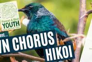 Dawn Chorus Hikoi