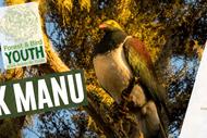 Dusk Manu - Birdwatching