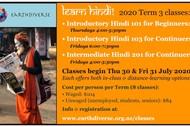 Introductory Hindi Language Courses