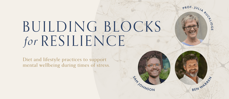 Building Blocks for Resilience: CANCELLED