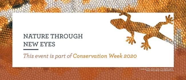 Conservation Week Volunteer Wednesday: POSTPONED