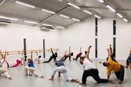 Brazilian Martial Art - Capoeira Class