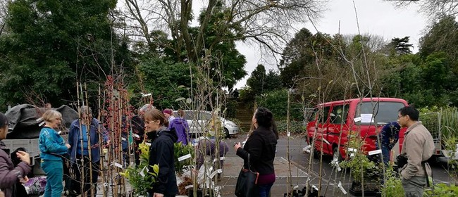 Spring Tree and Plant Sale 2020