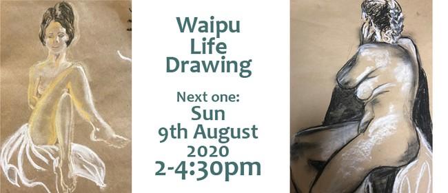 Waipu Life Drawing