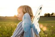 6km Butterfly Fun Run 2020 - Miscarriage Matters NZ