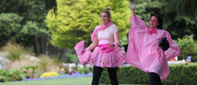 Pink Ribbon Walk Queenstown