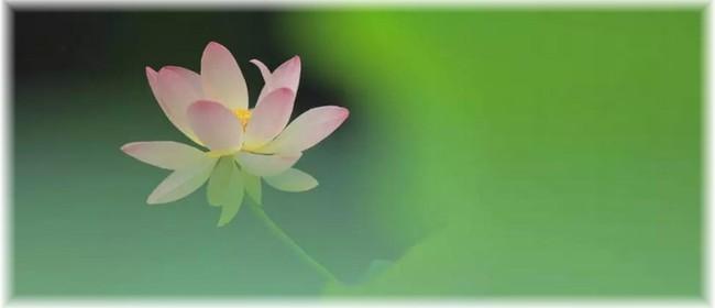 Qigong Class - Open up Your Heart Chakra