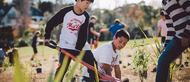 Porirua Planting day with Sustainable Coastlines and Pitstop