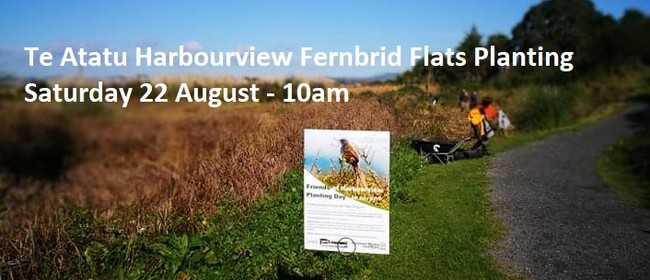 2020 August Te Atatu Harbourview Fernbird Flats Planting