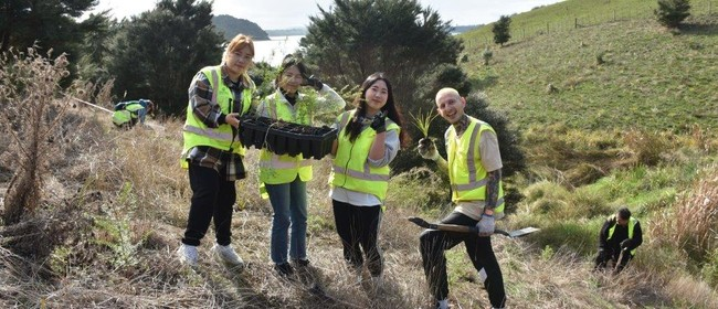 Atiu Creek Regional Park Community Planting Day