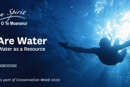 Conservation Week 2020: We Are Water