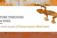 Conservation Week - Waste to Wilderness