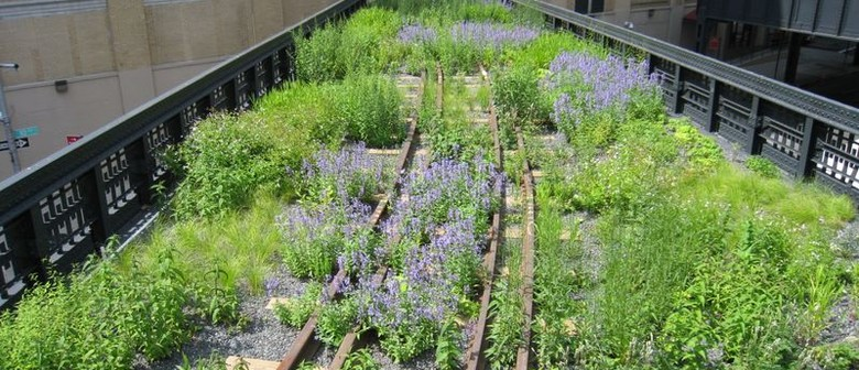 Re-imagining Lincoln Centre and the High Line: Movie