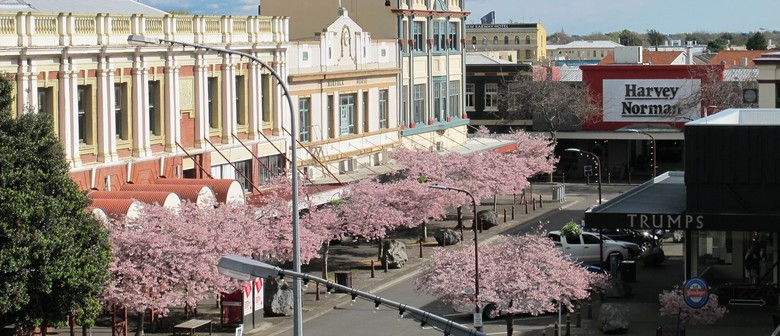 Palmerston North Cherry Blossoms Day Trip