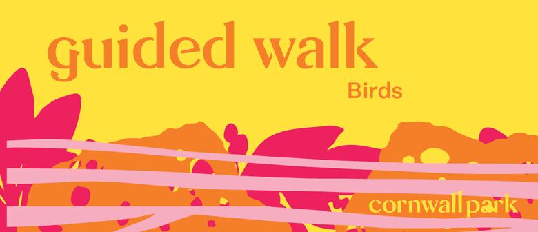 Guided Walk: Birds