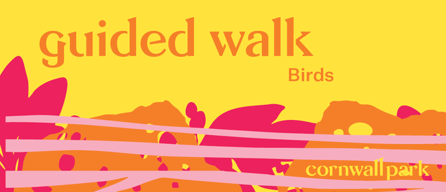 Guided Walk: Birds