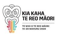 Te Wiki o te Reo Māori, Māori Language Week
