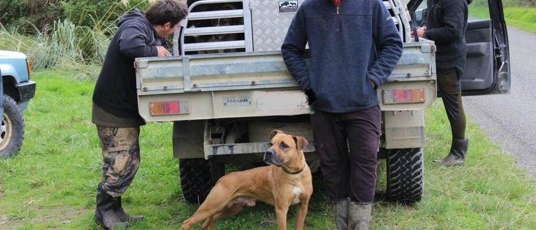 Kiwi Aversion Training For Dogs: POSTPONED