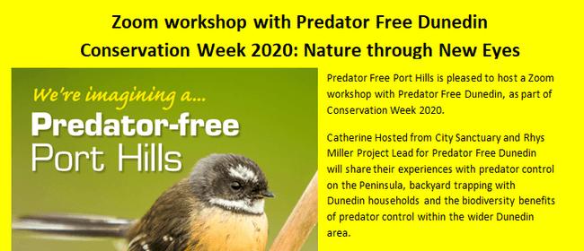 Zoom Workshop with Predator Free Dunedin
