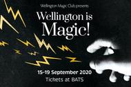 Wellington Is Magic