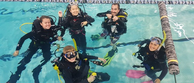 Learn to Dive PADI Openwater Diver