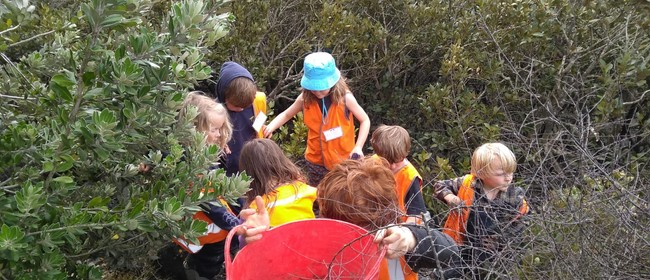 Conscious Kids - Meola Reef Reserve Spring Holidays 2020