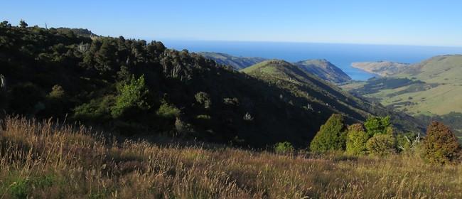 21 Mt Pearce Ridge Walk: SOLD OUT