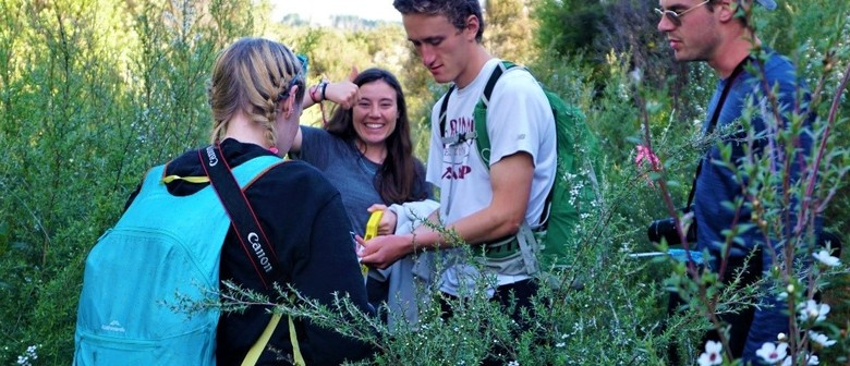 Experience Ecology in Action Summer Camp