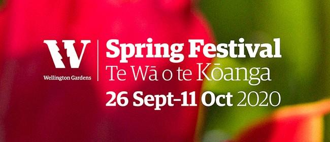 Spring Festival – Te Wā o te Kōanga