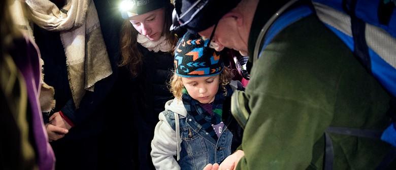 Kids Discovery Dusk Walk!