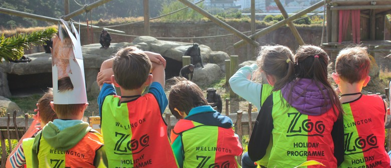 Zoo Holiday Programme