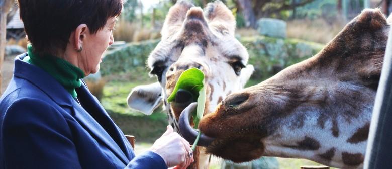 GOLD Wellington Zoo Visit