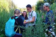 Experience Ecology In Action This Summer