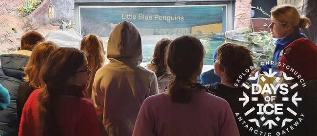 Days of Ice - International Antarctic Centre Penguin Keepers