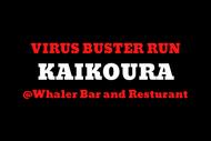 Virus Buster Run: Kaikoura