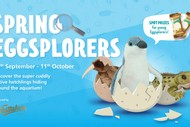 'Spring Eggsplorers' School Holiday Activity