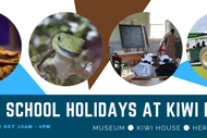 Join Us At Kiwi North These Spring School Holidays